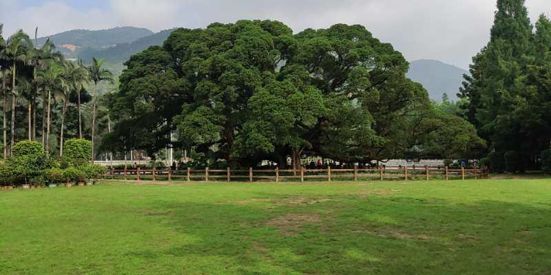 福州华光天锐全体员工于福州国家森林公园开展团建活动