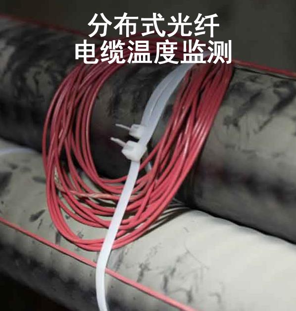 上海光纤测温